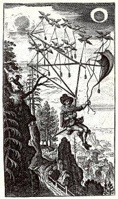 Fliegende Wandersmann_1659