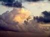Sopwith in the sky